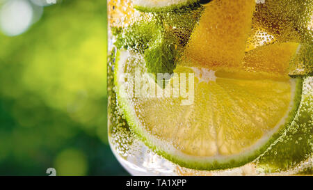 Summer carbonated cold fresh drink with slices of lemon and lime, mint leaf in a glass on a green leaf blurred background. Copy space. Alcoholic or no - Stock Photo