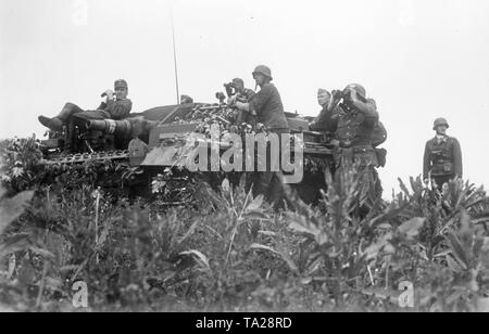 On a Sturmgeschuetz III, German officers watch the fights during the German offensive in the direction of Stalingrad and the Caucasus. The picture was taken in June 1942. On the left of the tank is an officer of the Luftwaffe, presumably a Forward Air Controller. Photo Blaschka - Stock Photo
