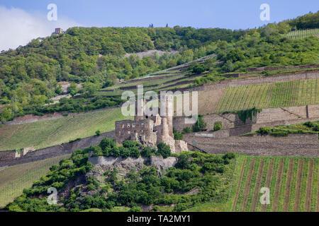 Ruin Ehrenfels castle, Unesco world heritage site, Bingen on the Rhine, Upper Middle Rhine Valley, Rhineland-Palatinate, Germany - Stock Photo