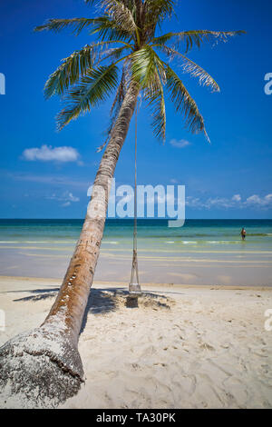 Swing on a palm tree. Sea beach in the afternoon, clear sky. Spa Romance, Can Tho, Vietnam