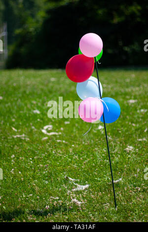 Bunch of colorful balloons attached to a pole on a parc during a birthday party - Stock Photo