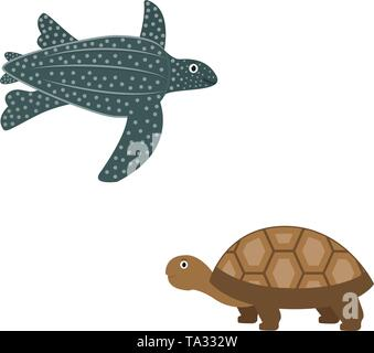 African leatherback turtle and spurred turtle icons in flat style, animal vector illustration - Stock Photo