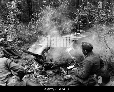 German officers, presumably subordinate to Army Group Center, resting in Central Russia. - Stock Photo
