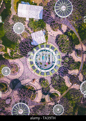 Aerial Shot of the Supertree Grove in Gardens By The Bay, Singapore