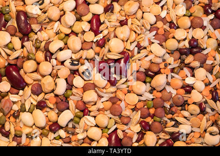 Mixed dry seeds, chick peas, lentils and beans - Stock Photo