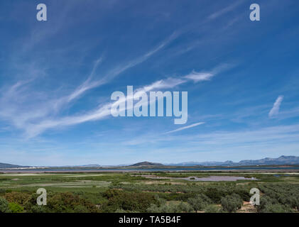 Big Sky over the Olive Groves and Lagoon of Fuente de Piedra, and inland Saltwater lake situated in Andalucia, near to Malaga, Spain - Stock Photo