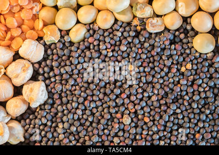 Various sized seeds and peas ingredients - Stock Photo