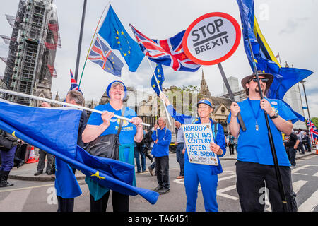 Westminster, London, UK. 22nd May 2019. SODEM, pro EU, protestors continue to make their point for remaining in the EU, outside Parliament on the eve of elections for the European Parliament. Credit: Guy Bell/Alamy Live News - Stock Photo
