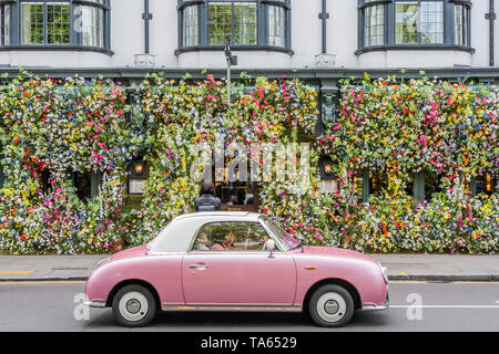 London, UK. 22nd May 2019. People pass by but many are drawn to stop an take pictures or selfies at The Ivy Chelsea Garden Branch - Chelsea in Bloom, part of the finge activities to the Chelsea Flower Show. Credit: Guy Bell/Alamy Live News - Stock Photo