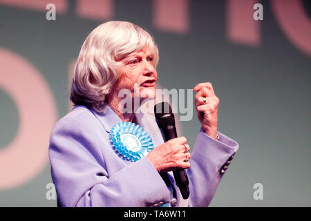 Ann Widdecombe addressing the supporters, during a Brexit Party Rally at Olympia, London. - Stock Photo