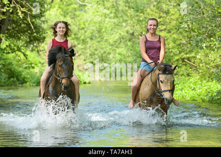 German Riding Pony. Girls on back of ponies riding bareback in a stream. Germany - Stock Photo