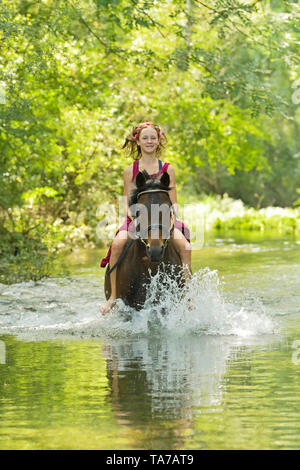 German Riding Pony. Girl on back of bay horse riding bareback in a stream. Germany - Stock Photo