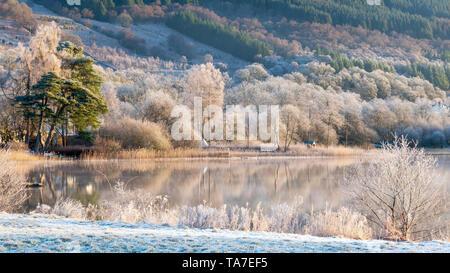 Hoar frost in mid-winter over Loch Ard at Kinlochard, Aberfoyle, Scotland. - Stock Photo