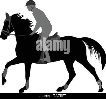 high quality silhouette of young man riding horse - vector - Stock Photo