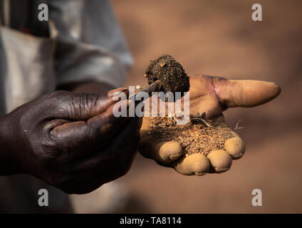 Senufo blacksmith using a magnet to find the metal, Poro region, Koni, Ivory Coast - Stock Photo