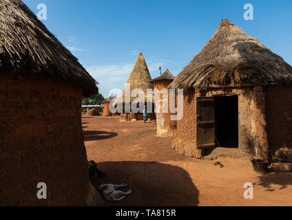 Houses with thatched roofs in a Senufo village, Savanes district, Niofoin, Ivory Coast - Stock Photo