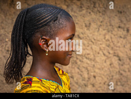 Portrait of a Peul tribe girl with braided hair, Savanes district, Boundiali, Ivory Coast - Stock Photo