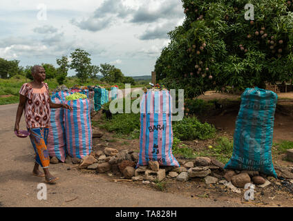 Coal for sale in big bags along the road, Bafing, Yo, Ivory Coast - Stock Photo