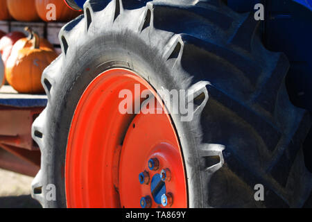 Close up of isolated black wheel tire with deep sufficient tread of antique old tractor with red rim and blue nuts on a farm in Netherlands - Stock Photo