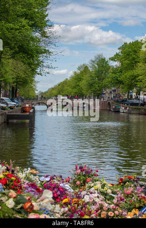 Amsterdam canal and flowers - European canal in Holland / Amsterdam and canal bridge - typical Amsterdam spring & architecture - Stock Photo