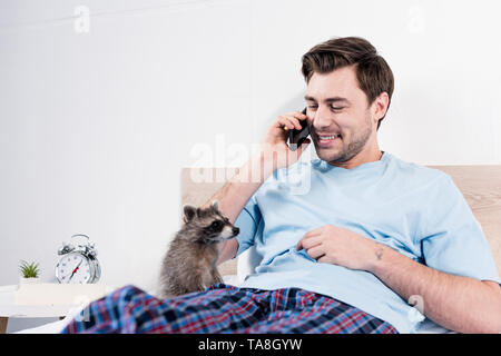 cheerful man talking on smartphone while resting in bed with cute raccoon - Stock Photo