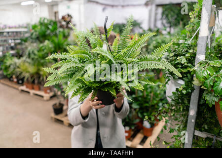 A young woman holding a Nephrolepis plants, fern, chooses a plant for the house. Hiding behind him. Many different plants in flower pots in flowers - Stock Photo