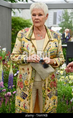 Dame Judi Dench was presented with a sapling elm tree to launch the re-elming of the British Countryside starting this year. Hillier Nurseries, RHS Chelsea Flower Show, London. UK - Stock Photo