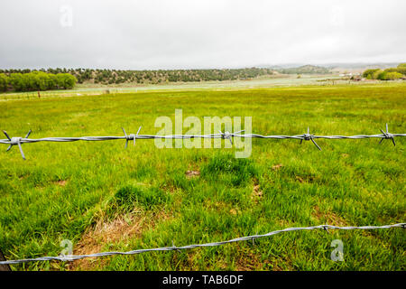 Close-up of barbed wire fence; ranch in Central Colorado; USA - Stock Photo