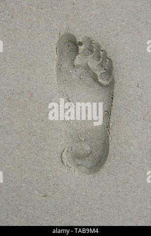A Human Footprint in the sand - Stock Photo