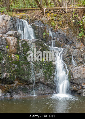 Lilydale Falls consists of two waterfalls near each other, in the Lilydale Falls Reserve near the township of Lilydale in Tasmania, Australia. - Stock Photo