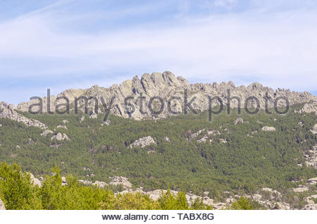 Regional park La Pedriza, in Manzanares el Real (Madrid - Spain). Multiple granitic rock formations known as Las Torres. Pine trees forest - Stock Photo