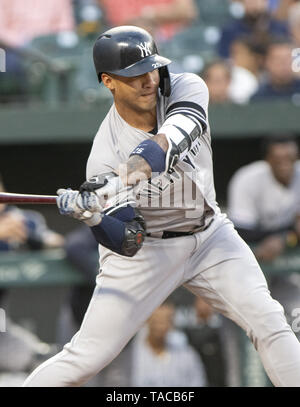 Baltimore, Maryland, USA. 22nd May, 2019. New York Yankees shortstop Gleyber Torres (25) bats in the second inning against the Baltimore Orioles at Oriole Park at Camden Yards in Baltimore, MD on Wednesday, May 22, 2019 Credit: Ron Sachs/CNP/ZUMA Wire/Alamy Live News - Stock Photo
