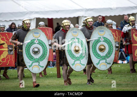 Ermine Street Guard show Imperial Roman Army at Wrest Park, England - Stock Photo