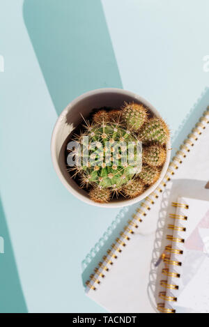 Creative workspace desk with notebook  pencil and cactus on soft blue background. Nobody - Stock Photo