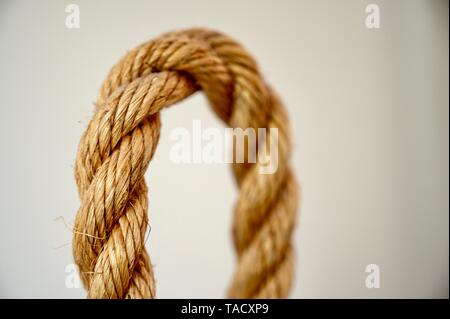 A highly textured loop of fishing rope set on a light interior. - Stock Photo