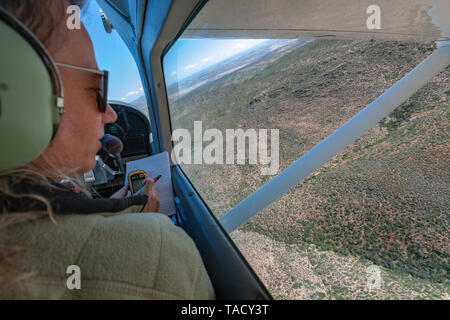 SANParks scientist counting game during the aerial game census of the Namaqua National Park in the Northern Cape Province, South Africa. - Stock Photo