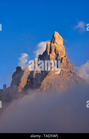Italy, Trentino, Dolomites, Passo Rolle, mountain group Pale di San Martino with the mountain Cimon della Pala - Stock Photo