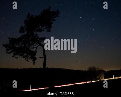 Germany, Bavaria, Nabburg, starry sky with tree and light trails - Stock Photo
