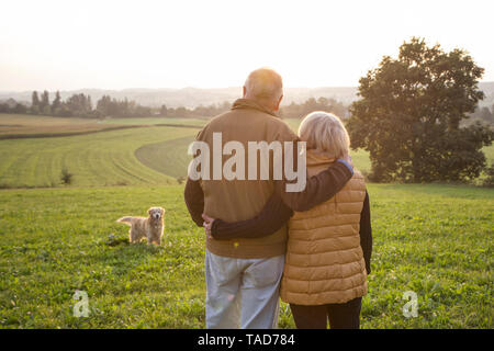 Back view of happy senior couple standing arm in arm on a meadow enjoying sunset - Stock Photo
