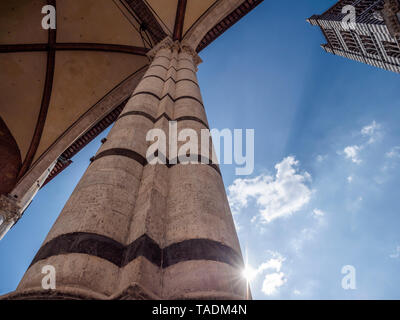 Italy, Tuscany, Siena, Siena Cathedral, tower and column against the sun, low angle view