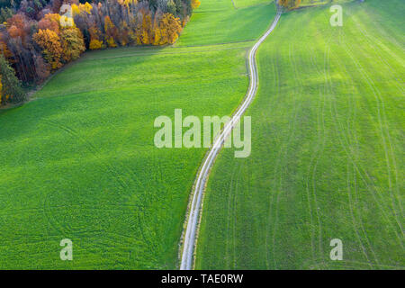 Germany, Bavaria, Icking, dirt track and meadows, aerial view - Stock Photo