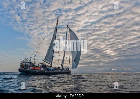 Tara Oceans Expeditions - May 2011. Sailing Tara; Guayaquil-Galapagos leg; Ecuador - Stock Photo