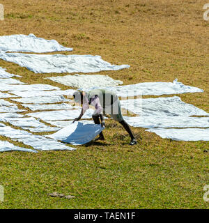 Square view of a dhobi wallah laying out clean washing to dry in India. - Stock Photo