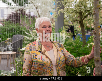 Actress and author, Dame Judith Olivia Dench, known as Judi Dench, at the RHS Chelsea Flower Show. - Stock Photo