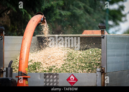 Wood chipper machine releasing the shredded tree branches into a truck - Stock Photo