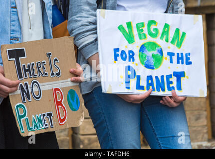 Bournemouth, Dorset, UK. 24th May 2019. Youth Strike 4 Climate gather in Bournemouth Square with their messages about climate change, before marching to the Town Hall.  There is no planet B, vegan for the planet Earth signs. Credit: Carolyn Jenkins/Alamy Live News - Stock Photo