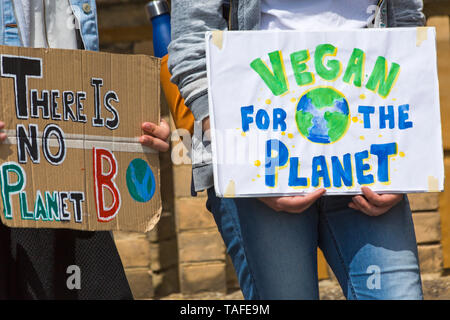 Bournemouth, Dorset, UK. 24th May 2019. Youth Strike 4 Climate gather in Bournemouth Square with their messages about climate change, before marching to the Town Hall.  There is no planet B and vegan for the planet earth signs. Credit: Carolyn Jenkins/Alamy Live News - Stock Photo