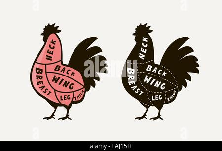 Diagram guide for cutting meat rooster, butcher shop. Chicken vector