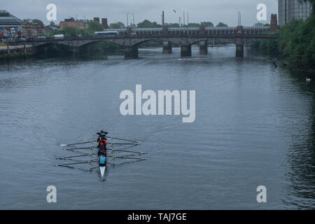 Glasgow, Scotland, UK. 25th May, 2019. The Scottish Boat Race is an annual rowing race over 2km on The River Clyde between the University of Glasgow Boat Club and the University of Edinburgh Boat Club. The race starts at the South Portland Street Suspension Bridge and finishes at the Glasgow Science Centre Tower. The event consists of six different races:  a mixed graduate, a men's novice & second eight, a women's novice & second eight, men's first eight, women's first eight and an ergometer team race. Credit: Skully/Alamy Live News Credit: Skully/Alamy Live News - Stock Photo