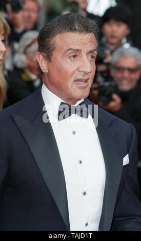 Sylvester Stallone, 2019 Credit: Allstar Picture Library/Alamy Live News - Stock Photo